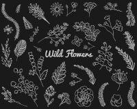 Bladeren van bloemen Beeldverhaal polair met harten Leuke Bloemeninzameling, hand getrokken waterverf huwelijk of groetkaarten Ro stock illustratie