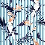 Bladeren van de de zomer de tropische wildernis met het witte saemless klopje van de aravogel vector illustratie