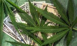 Bladeren van marihuana tegen de achtergrond van dollarrekeningen stock afbeelding