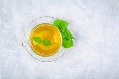 Bladeren van verse groene netel en een duidelijke glaskop van kruiden netto stock foto's