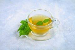 Bladeren van verse groene netel en een duidelijke glaskop van kruidennetelthee op een grijze concrete lijst royalty-vrije stock afbeelding