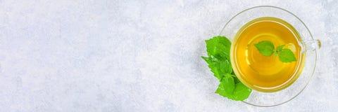 Bladeren van verse groene netel en een duidelijke glaskop van kruidennetelthee op een grijze concrete lijst Hoogste mening royalty-vrije stock afbeelding