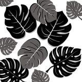 Bladeren van wildernis 3 Stock Afbeelding
