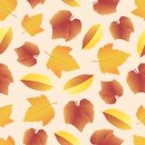 Bladeren verzamelen-04 stock illustratie