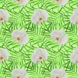 Bladerenpalmen met groen orchidee naadloos patroon stock illustratie