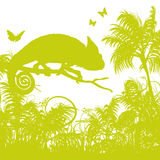 Blades of grass with chameleon. Blades of grass and palm trees with chameleon Royalty Free Stock Photos