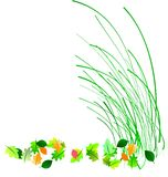 Blades of spring. Blades of grass and leaves depicting spring clean up on white Royalty Free Stock Photography
