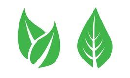 Bladet lämnar, växter, sörjer träd, gräs, logoen, naturen, gräsplan, symbolsuppsättning av vektorn royaltyfri bild
