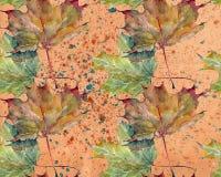 Bladlönn, färgstänk, vattenfärg, mönstrar sömlöst Fotografering för Bildbyråer