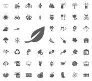 Bladpictogram Het tuinieren en geplaatste hulpmiddelen vectorpictogrammen Stock Foto's