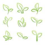 Bladsimbolen, uppsättningen av gröna sidor planlägger beståndsdelar Royaltyfri Foto