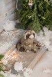 Blaireau à l'arbre de Noël dans la neige Image libre de droits