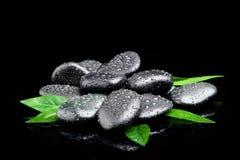 Blak brunnsortstenar med bladet och vatten Royaltyfri Fotografi
