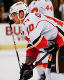 Blake Comeau Calgary Flames fotografia stock