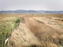 Blakeney Marsh Royalty Free Stock Image