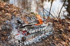 Blaknąć ogienia na lasowej rzece w wieczór zdjęcia royalty free
