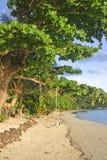blanc arénacé de plage photographie stock