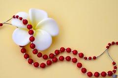 Blanc avec la fleur jaune et les perles de corail rouges lumineuses avec les accents argentés sur un fond jaune image libre de droits