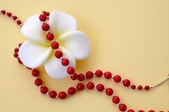 Blanc avec la fleur jaune et les perles de corail rouges lumineuses avec les accents argentés sur un fond jaune photo libre de droits