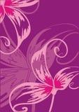 Blanc avec les fleurs violettes. Photo stock