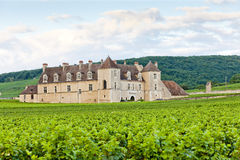 blanc castle clos de vougeot Στοκ φωτογραφία με δικαίωμα ελεύθερης χρήσης