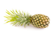 Blanc d'ananas sur le fond Photo libre de droits