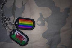 blanc d'armée, étiquette de chien avec le drapeau du Pays de Galles et le drapeau gai d'arc-en-ciel sur le fond kaki de texture Photographie stock libre de droits