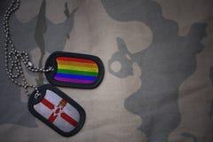blanc d'armée, étiquette de chien avec le drapeau de l'Irlande du Nord et le drapeau gai d'arc-en-ciel sur le fond kaki de textur Image libre de droits