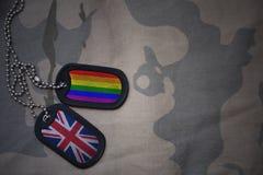 blanc d'armée, étiquette de chien avec le drapeau de la Grande-Bretagne et le drapeau gai d'arc-en-ciel sur le fond kaki de textu Photos stock