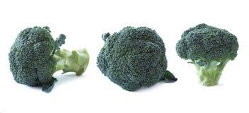 blanc de broccoli de fond Légumes avec l'espace de copie pour le texte Broccoli d'isolement sur un fond blanc Ensemble de brocoli image libre de droits