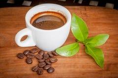 blanc de chemin d'isolement par café express de cuvette de café de fond Images libres de droits