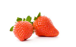 blanc de fraise de fond Image stock