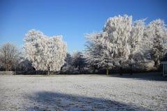 Blanc de l'hiver 1891 plus de Photographie stock