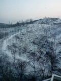 Blanc de neige Photographie stock