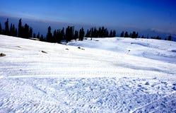 Blanc de neige Image stock