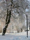 Blanc de neige de l'hiver Photo libre de droits