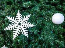 Blanc de neige sur l'arbre de Noël Photo stock