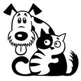 Blanc de noir d'amitié de chat et de chien Photographie stock libre de droits