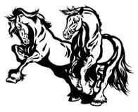 Blanc de noir de deux chevaux de trait photo stock