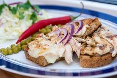Blanc de poulet frit sur le pain avec le paprika frais d'oignon Photos stock