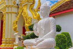 blanc de statue de Bouddha Photos stock