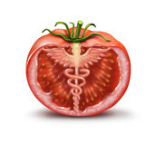 blanc de studio de santé de nourriture de flocons d'avoine de fond macro illustration libre de droits