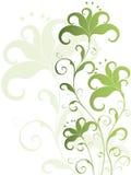 blanc de vert de fleur de fond Photos libres de droits