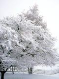 Blanc dehors image stock