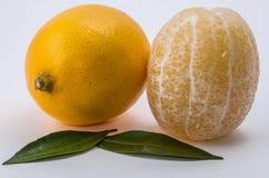 blanc des citrons deux de fond Image libre de droits