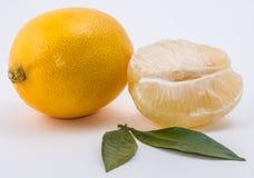 blanc des citrons deux de fond Photo libre de droits