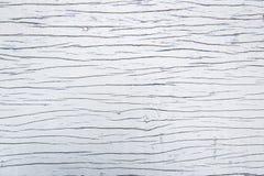 Blanc en bois de fond Images stock