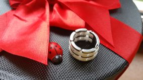 Or blanc et anneau en céramique Photo libre de droits