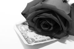 Blanc et rose et argent de noir Photographie stock