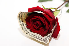 Blanc et rose et argent de noir Photos libres de droits